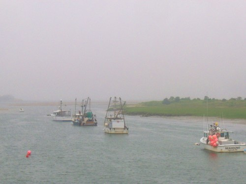 Chatham on a foggy, cool Sunday. There were seals in this harbor.